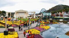 everland_amusement_park_korea.jpg
